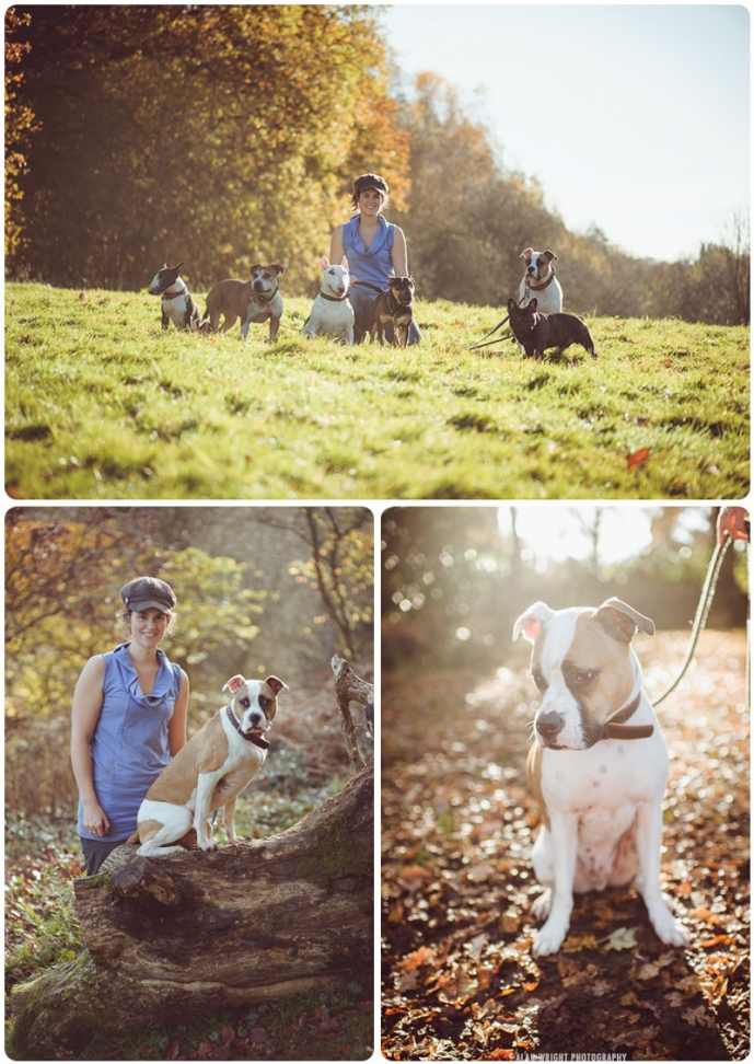 six dogs are taken for a walk in the Surrey countryside