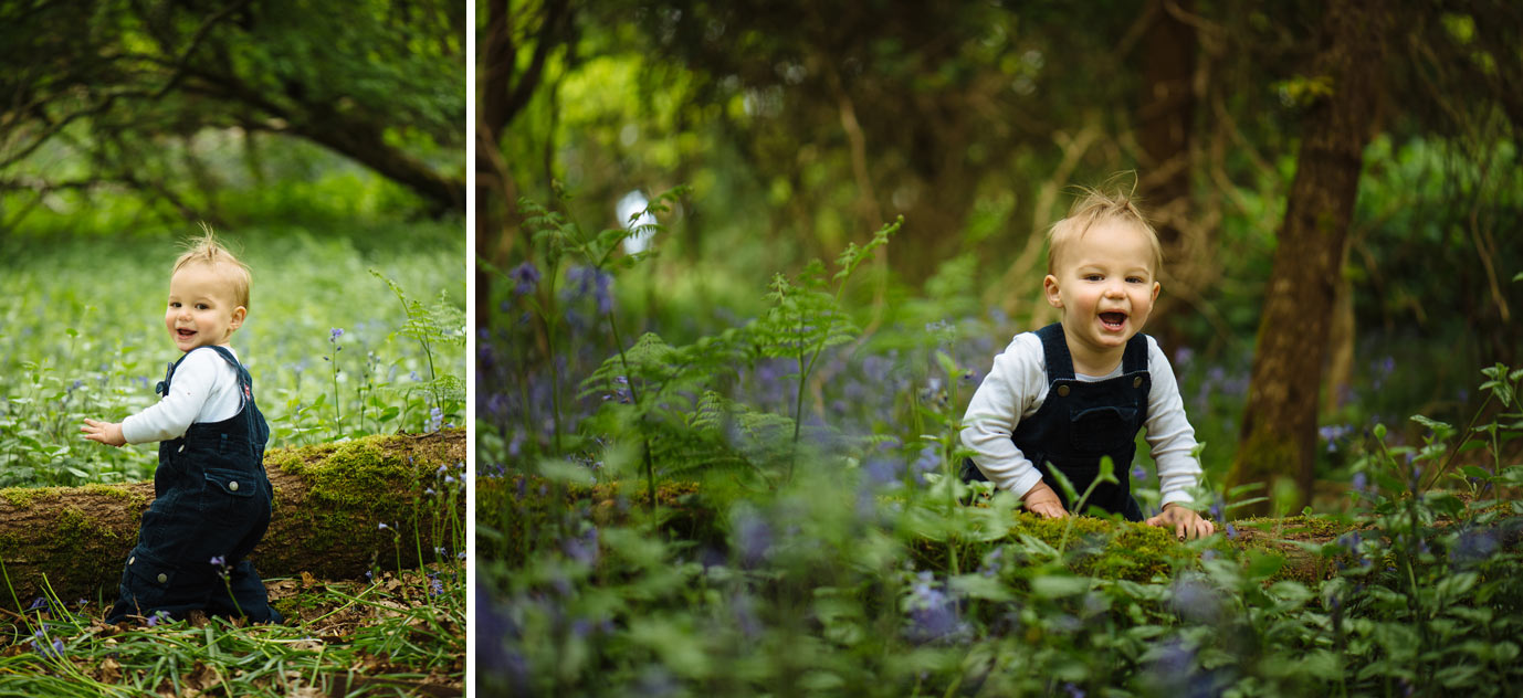 Child explores the bluebell patch